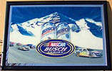 Busch Series NASCAR Racing Mirror