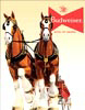 Budweiser Clydesdales Team Tin Sign