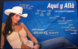 Bud Light Sexy Cowgirl Tin Sign